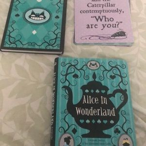 Disney collection journal
